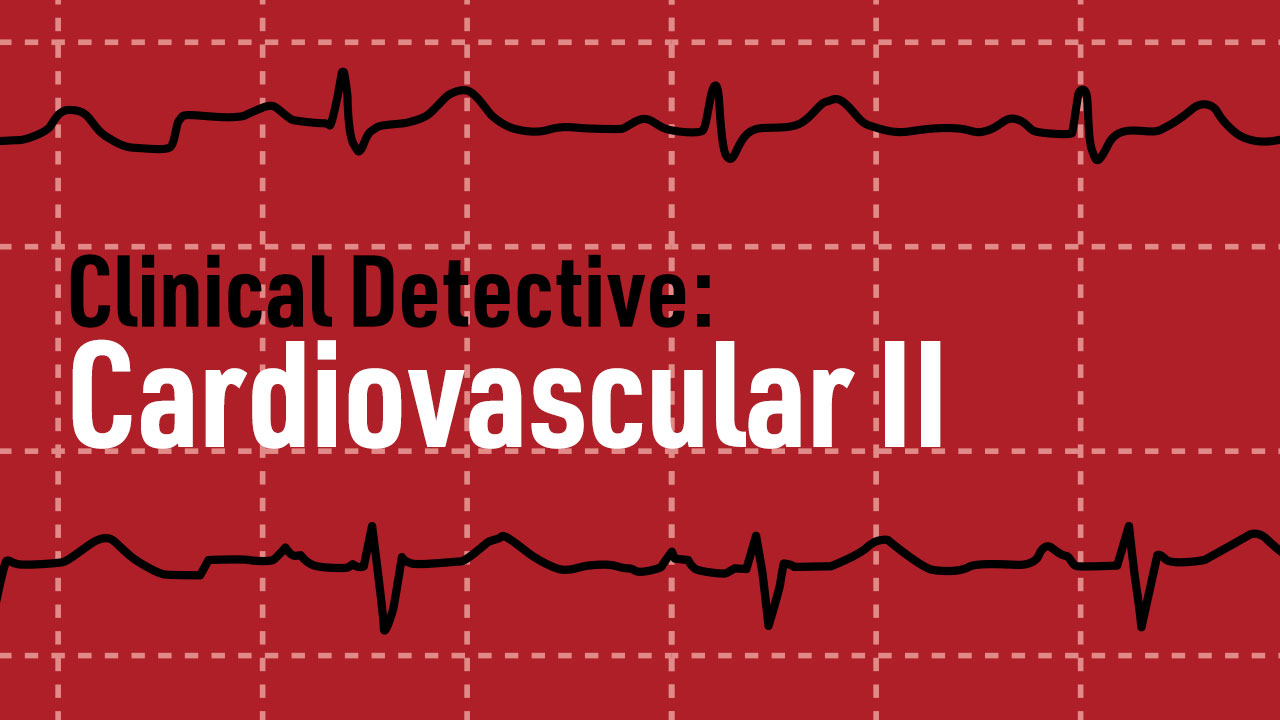 Cover image for: Clinical Detective: Cardiovascular Two