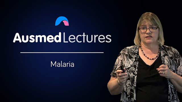 Cover image for lecture: Malaria