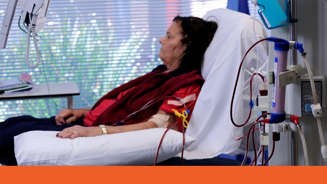 Image for Patient Blood Management: Chronic Kidney Disease