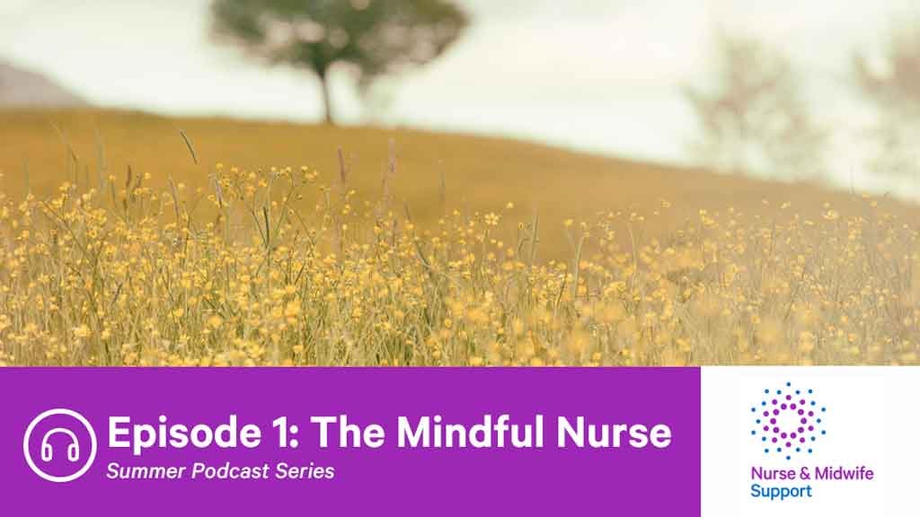 Image for The Mindful Nurse